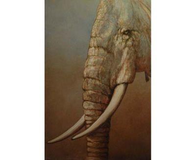 tableau elephant AF